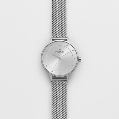スカーゲン Anita Steel Mesh Watch SKW2149