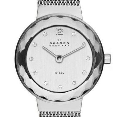 スカーゲン-Leonora Steel Mesh Watch 456SSS 画像1