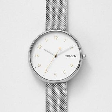 スカーゲン-Signatur Steel-Mesh Watch SKW2623 画像1